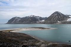 Gravneset at Magdalenefjorden IMG_8579 (grebberg) Tags: magdalenefjorden spitsbergen svalbard july 2016