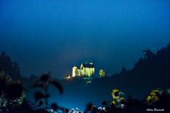 Waldburg sunflower blue hour ... (explored) (acbrennecke) Tags: achimbrennecke waldburg sunflower night lastlight nikon nikon5500 bluehour