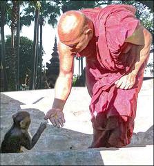 Comunicazione (ninin 50) Tags: comunicazione buddhismo myanmar montepopa trip ninin