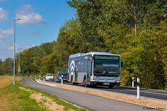 """VHH 0701   Hamburg, Leitdamm (Verlngerung """"Am Schleusenkanal"""") (torbensimon) Tags: vhh verkehrsbetriebehamburgholsteingmbh hamburg holstein vierundmarschlanden elbdeich deich hauptdeich elbe mercedesbenz citarolem 0701 wlan werbung linie 439 geesthachtzob geesthacht zob bus linienbus schnellbus stadtbus evobus"""