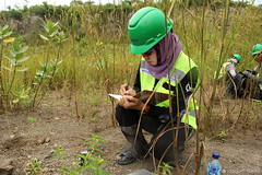 Lelly takes notes (JayBaeta) Tags: sky landscape flower plant butterfly flora fauna insect green clay quarry reclamation restoration rehabilitation research harsh conservation sap measurement data collection soil sampling root leaf qla2016 quarrylifeaward