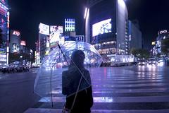 TOKYO RAIN (ajpscs) Tags: ajpscs japan nippon  japanese  tokyo  nikon d750 streetphotography street summer shitamachi nightshot tokyonight nightphotography citylights tokyoinsomnia nightview lights dayfadesandnightcomesalive afterdark urbannight alley rain ame   whenitrains  anotherrain badweather whentheraincomes cityrain sweetrain tokyorain