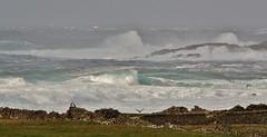Morning Breakers  IMG_5659 (Ronnierob) Tags: stormyseas quendalebay shetlandisles