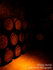 DSCN0664 (liamearth) Tags: scotland glengoyne distillery whisky barrels wood cellar stone dimly lit lighting rows