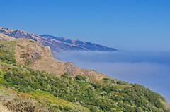 California Big Sur 94 the Fog on the coast (paspog) Tags: california cliff usa fog unitedstatesofamerica bigsur pacificocean falaise brouillard ocanpacifique
