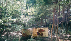 Hut in the Woods (MightyBoyBrian) Tags: panorama beach saugatuck 50mmf12 9images brenizermethod canon5dmark3
