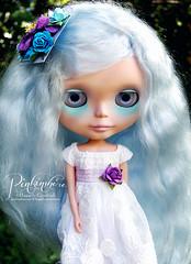 Maywynd Bluebun