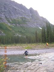 Steppe Creek crossing