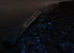 Washed Up (Gareth Priest) Tags: wood uk longexposure light sea sky beach water misty wales night dark still nikon rocks silent stones shoreline cardiff surreal eerie pebbles spooky driftwood le shore mysterious ambient cardiffbay penarth barrage ambiance bristolchannel d5100