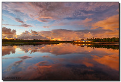 Early Morning (Fraggle Red) Tags: morning nature clouds sunrise reflections landscape dawn twilight bravo florida wetlands boardwalk hdr boyntonbeach naturecenter 5exp calmmorning greencay greencaywetlands canonef1635mmf28liiusm dphdr palmbeachco canoneos5dmarkiii 5d3 5diii