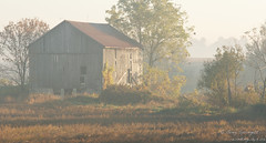The place that time forgot (Windingways Photography) Tags: autumn mist ontario canada fall nature barn sunrise canon eos landscapes farm harvest meadow sigma bank 7d fields southwesternontario bankbarn sigma85mm canoneos7d sigma85mmf14exdghsm