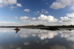 Sula at Traigh Ear, Grenitote, North Uist, Scotland (Malaclete) Tags: cloud dog reflection scotland shepherd north german ear uist solas gsd maari traigh grenitote crogary