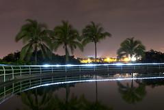 Reflection (D.OliveroS) Tags: longexposure light sky reflection water lines palms landscape nikon costarica long exposure reflect
