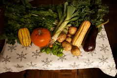 stoneledge farms CSA (Community Supported Agri...