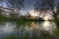 Reuss III (Daniel J. Mueller) Tags: trees sunset tree water forest river landscape schweiz switzerland bush wasser sonnenuntergang zrich fluss 16mm landschaft wald bume baum hdr reuss kanton kantonzrich 7xp cantonofzurich ottenbach d800e