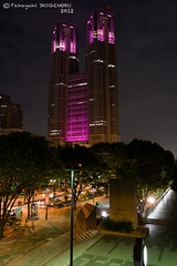 The Tokyo Metropolitan Government Office Building with the Pink Ribbon (Yuripere) Tags: gettyimagesjapan12q3 gettyimagesjapan12q4