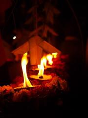 Festival celebrating God Murugar (Zmeul Calator) Tags: india festival murugar traditions munnar