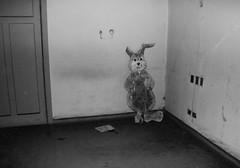Ruta de la Peste Hospital San Jos (@marknorway) Tags: abandoned night dark abandonado conejo rabbit hospital