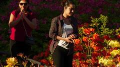 Alppiruusupuisto - Rhododendron park (Etel-Haaga, Helsinki, 20160531) (RainoL) Tags: park flowers plants plant flower nature finland geotagged helsinki may rhododendron ericaceae helsingfors fin haga 2016 uusimaa nyland haaga etelhaaga rhodopuisto alppiruusupuisto alprosparken 201605 geo:lon=2489408612 20160531 sdrahaaga geo:lat=6022228032