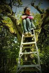 Pear Shaped (eddi_monsoon) Tags: threesixtyfive 365 selfportrait selfie self portrait tree peartree ladder