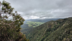 VIEW FROM RALPH'S FALLS BACK INTO THE VALLEY (16th man) Tags: tasmania pyengana ralphsfalls australia canon eos eos5dmkiii lichens moss forest