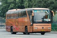 U 01432 - Mercedes Benz Tourismo O350 (DC's transport collection) Tags: ybl6128h u01432 mercedes benz tourismo o350