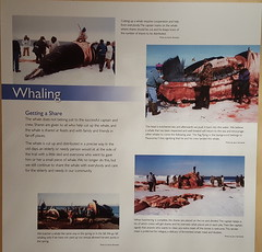 Whaling exhibit at the Inupiat Heritage Center