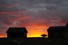 En ny dag gryr (tusenord) Tags: fotosondag soluppgång stämning stamning fs160918 öland ölandssödraudde gammalt hus sunrise old house sverige birdwatching siluett silhouette clouds