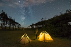 'Surprise View' - Newborough, Anglesey (Kristofer Williams) Tags: llanddwyn newborough tent camp camping wildcamp astro astrophotography night sky stars nightscape forest figure selfie portrait landscape wales beach coast trees