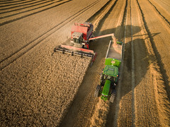 Teamwork II (Draws_With_Light) Tags: vegetation aerialphotography activity landscape season tractor combineharvester scene drone harvesting summer agriculture djiphantom3advanced fields northyorkshire vehicles camera wheatfields places york england unitedkingdom gb