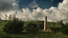 Rovine della foresta (Cacummaro) Tags: forest trees green brown clouds sky september 2016 rovine samsungs3neo camera light