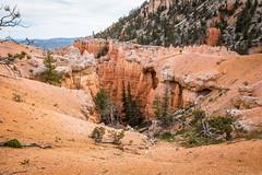 Along the Hat Shop Trail (Serendigity) Tags: brycecanyonnationalpark outdoors usa unitedstates landscape utah nature