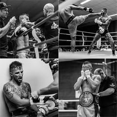 Some impressions of a intense fightnight (phothomasde) Tags: k1 fightnight kickboxing muaythai boxing fight battle intense blood sports winner looser nikita pankraz canon blackandwhite photojournalism phothomas photographer oldenburg rastede bremen fotograf thomasweber germany