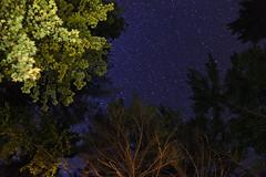 Starry Sky in the Adirondacks (Kevin Baird) Tags: sky newyork night stars adirondacks 2012 newenglandtrip