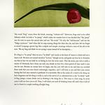 """<b>Meditations on a Tree Frog</b><br/> Kamb (LC '07)(Broadside)<a href=""""http://farm9.static.flickr.com/8030/7950199558_82f2ddb5d1_o.jpg"""" title=""""High res"""">∝</a>"""