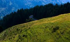 Three Different Types of Green. (drugodragodiego) Tags: panorama green landscape pentax alpi montagna brescia lombardia k5 breno panorami gaver bagolino provinciadibrescia pentaxda55300 pentax55300 pentaxk5 montebruffione valledicadino