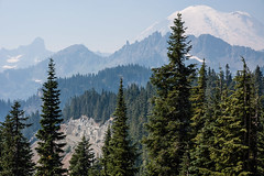 Mount Rainier National Park, Washington State. 2012 (_jg_) Tags: trees snow mountains cold washington unitedstates snowy alpine mountrainier climate enumclaw northcascades
