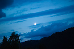 IMG_9550 (zokamoka) Tags: wood blue light summer moon white mountain black detail macro tree green water field grass sport norway night ball butterfly dark paper insect landscape dawn daylight boat spider fly leaf football dock day branch legs zoom dusk widescreen arachnid moth fake player plastic galaxy micro sound grasshopper locust footballfield thin telemark lightpost antenna lots zoomed kviteseid arachnofobia