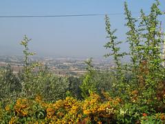 Assisi (Priska B.) Tags: italien italia assisi umbrien i