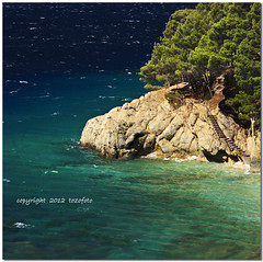 (tozofoto) Tags: travel trees light sea summer holiday travelling beach water colors canon landscape rocks croatia insel step summertime adriatic adria dalmatia tozofoto
