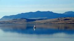 Great Salt Lake - America's Dead Sea (trek22-) Tags: lake canon utah day clear antelopeisland saltlakecity greatsaltlake 7d trek22 canonimagination flickrnonexclusive