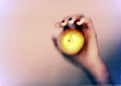 273/366 - 29/09/12 (oana-emilia) Tags: apple fruit mar hand mana 2012 scanography week39 breaktherules 365project shuttersisters shuttersister 3652012 shuttersister365 week39theme 522012 52weeksthe2012edition 365the2012edition weekofseptember23