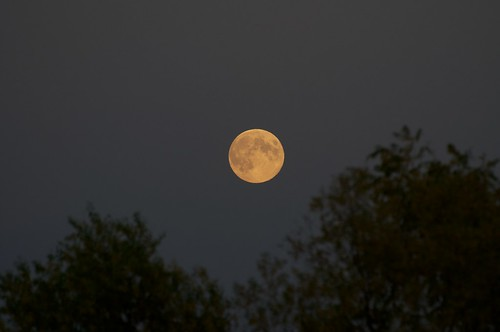 Harvest Moon _2012_09_29_19-14-19_DSC_2793_©LindsayBerger2012