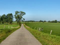 Bronkhorsterwaarden - river foreland (joeke pieters) Tags: holland netherlands landscape nederland achterhoek landschap gelderland uiterwaard explored riverforeland 1020152 panasonicdmcfz150 bronkhorsterwaarden