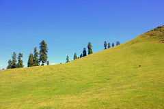 Sky and landscape (Murtaza Mahmud) Tags: travel pakistan green nature trekking sudhangali canonphotography gangachoti