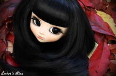 Separation (pure_embers) Tags: uk autumn red black sexy girl leaves rose tattoo dark doll dolls eyelashes head gothic mina wig rockabilly modified pullip pure pinup vixen embers obitsu ddalgi leekeworld