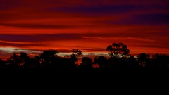 Bowra sunset (Andy Burton Oz) Tags: sunset red color colour clouds australia qld queensland 2012 cunnamulla bowra warrego andyburton afsdxzoomnikkor1855mmf3556gedii bowrastation southwestqueensland nikond7000 bowrasanctuary aperture341