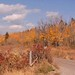 YNP-GTNP-fall-colors20
