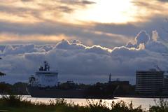 hidden ship (Wade Bryant) Tags: sunrise river ship detroit belle isle freight