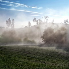 landscape - 0014 (helmet13) Tags: morning trees mist nature sunshine fog forest landscape raw silence studies gettyimages aoi 100faves peaceaward d700 heartaward world100f
